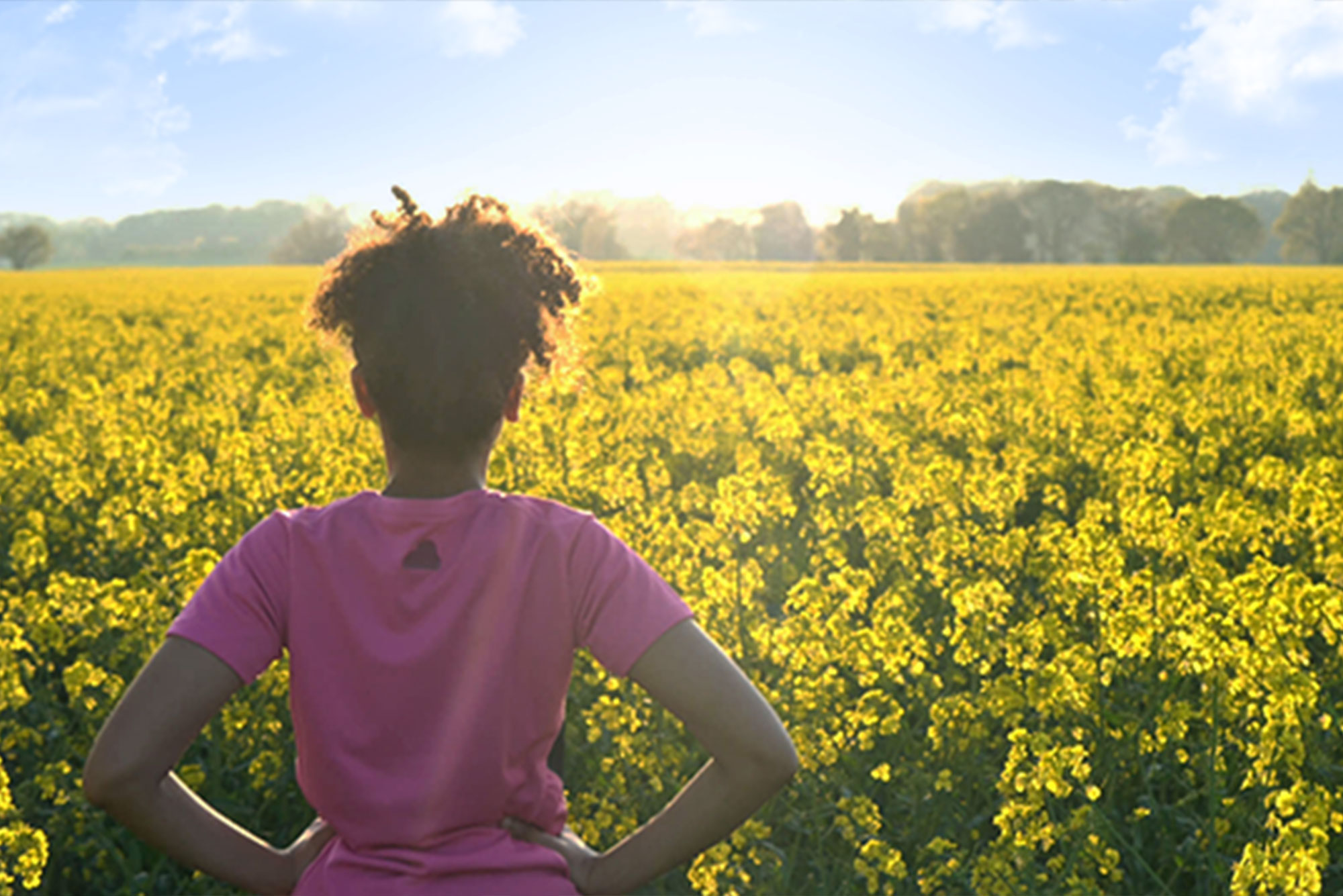 Girl standing in field of sunflowers